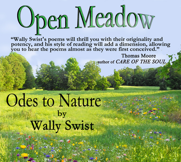 Open Meadow: Odes to Nature by Wally Swist